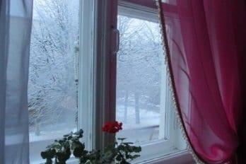Зима пришла. Фото Елены Малец