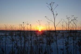 Зимний закат. Ярославская область. Фото Дарьи Павловой