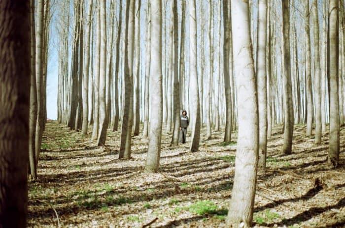 Канон Андрея Критского: опять о том, какие мы плохие?