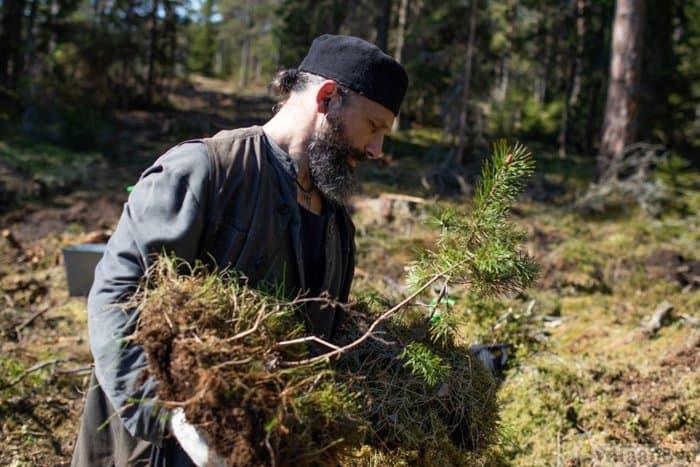 Валаамские монахи занялись оздоровлением лесов на архипелаге