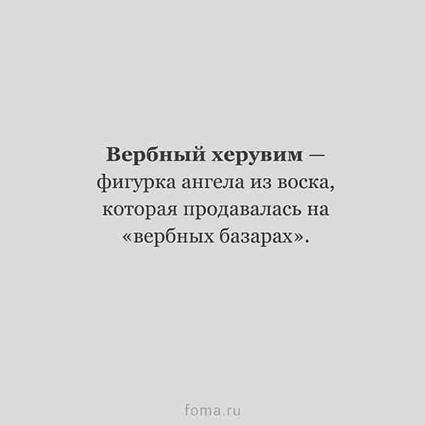 10 забытых слов из «Евгения Онегина»