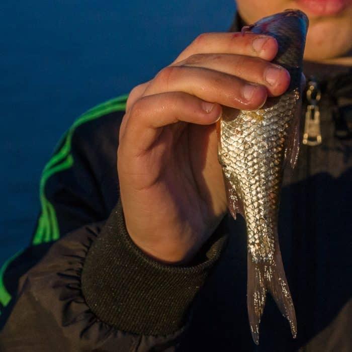 Жизнь у реки: фотозарисовки сибирского фотографа - фото 9