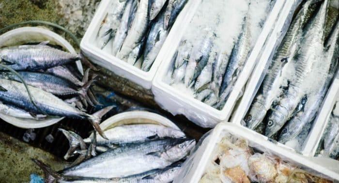 Грех ли есть рыбу в Успенский пост?