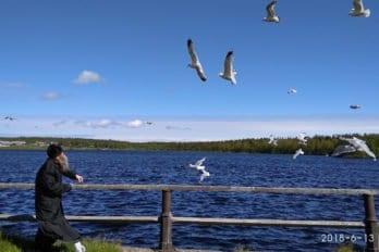 Большой Соловецкий остров. Святое озеро. Фото Юлии Федоровой