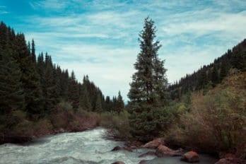 Река Тургень-аксуу-18