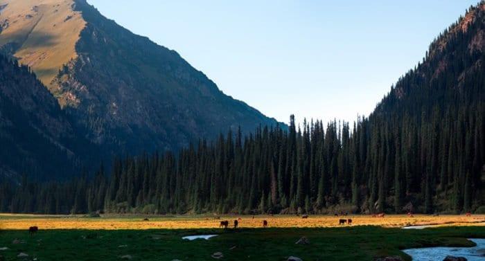 Детство на Иссык-Куле: удивительные фотографии, которые сибирский священник сделал в Кыргызстане