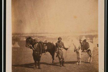 Нубийцы в составе войск коалиции
