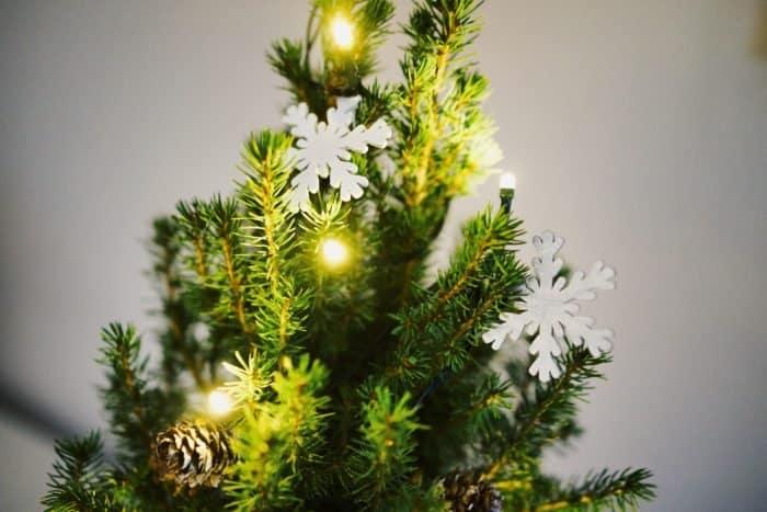 5 рождественских рассказов, от которых подростки не заскучают