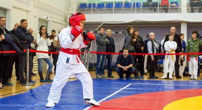 Мастера единоборств приглашаются на IX Кубок Николая Японского