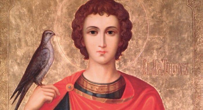 Церковь вспоминает святого мученика Трифона