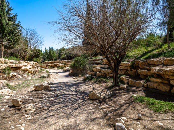Иудейская пустыня в ожидании Пасхи: 20 потрясающих видов - фото 2