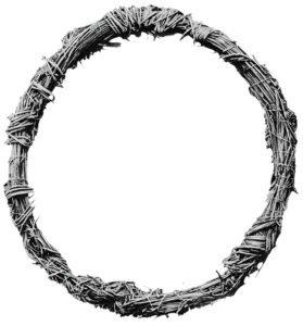 Терновый венец Спасителя. Инфографика