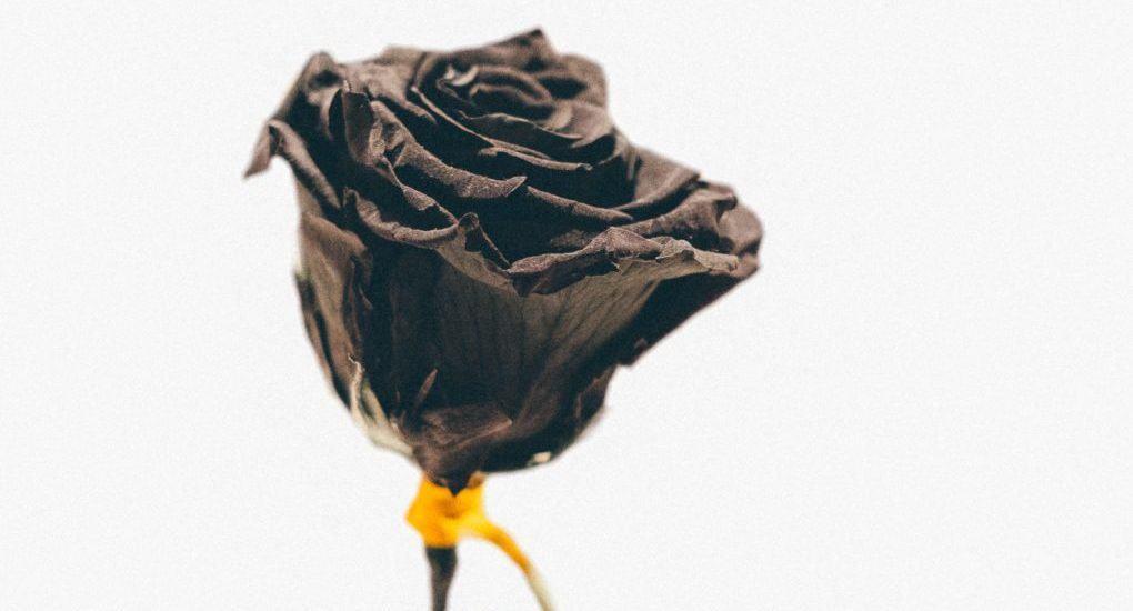 Что можно после смерти близкого?