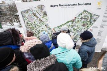 2019-02-15,A23K0484, Москва, Дети Донбасса, s_f