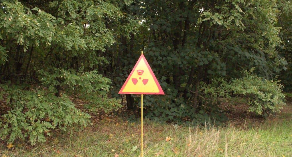 Глава Росприроднадзора рассказала, что Россия может получить «экологический Чернобыль»