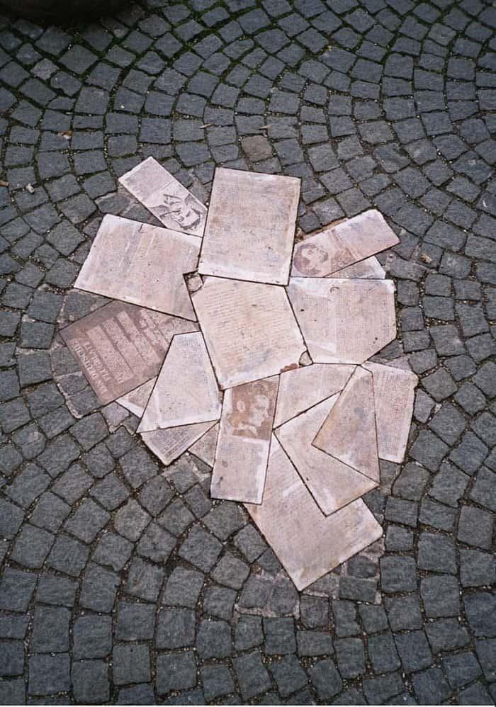 "Памятник ""Белой розе"". Фото Gryffindor/wikipedia.org"