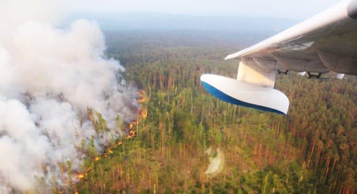 На Кузбассе молятся об избавлении от лесных пожаров и просят делать это всех верующих