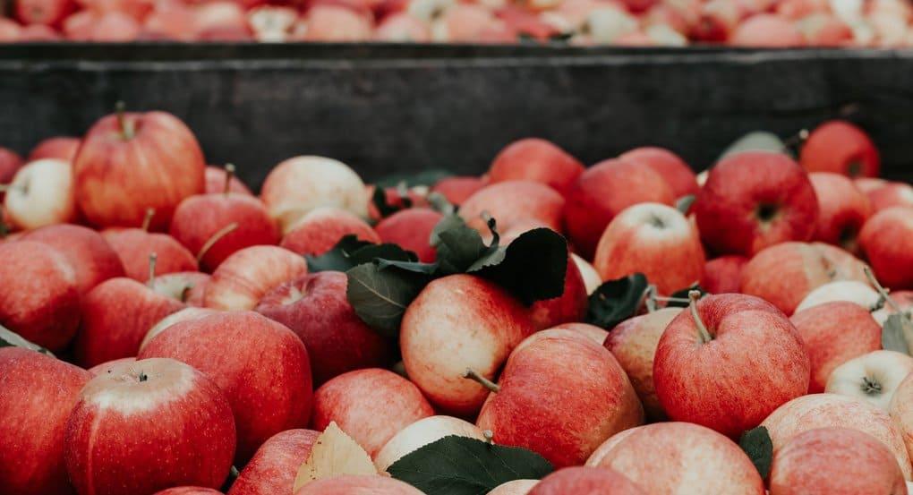 Почему нельзя есть яблоки до Яблочного Спаса?