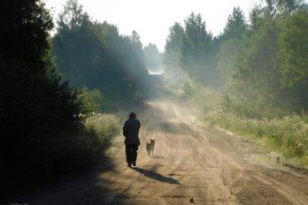 Фото Светланы Крыловой