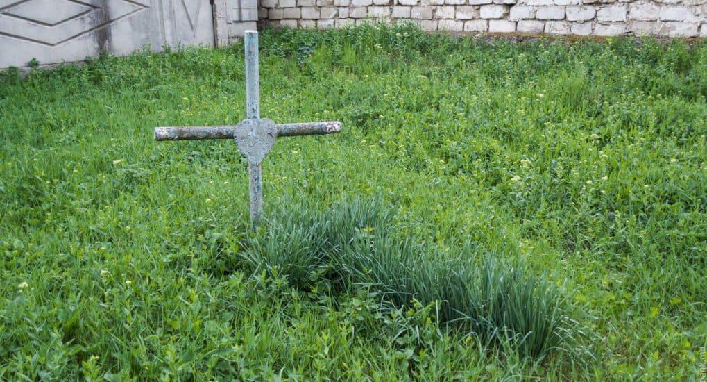 Можно ли раскопать могилу на 30-40 см, чтобы удалить корневища травы?