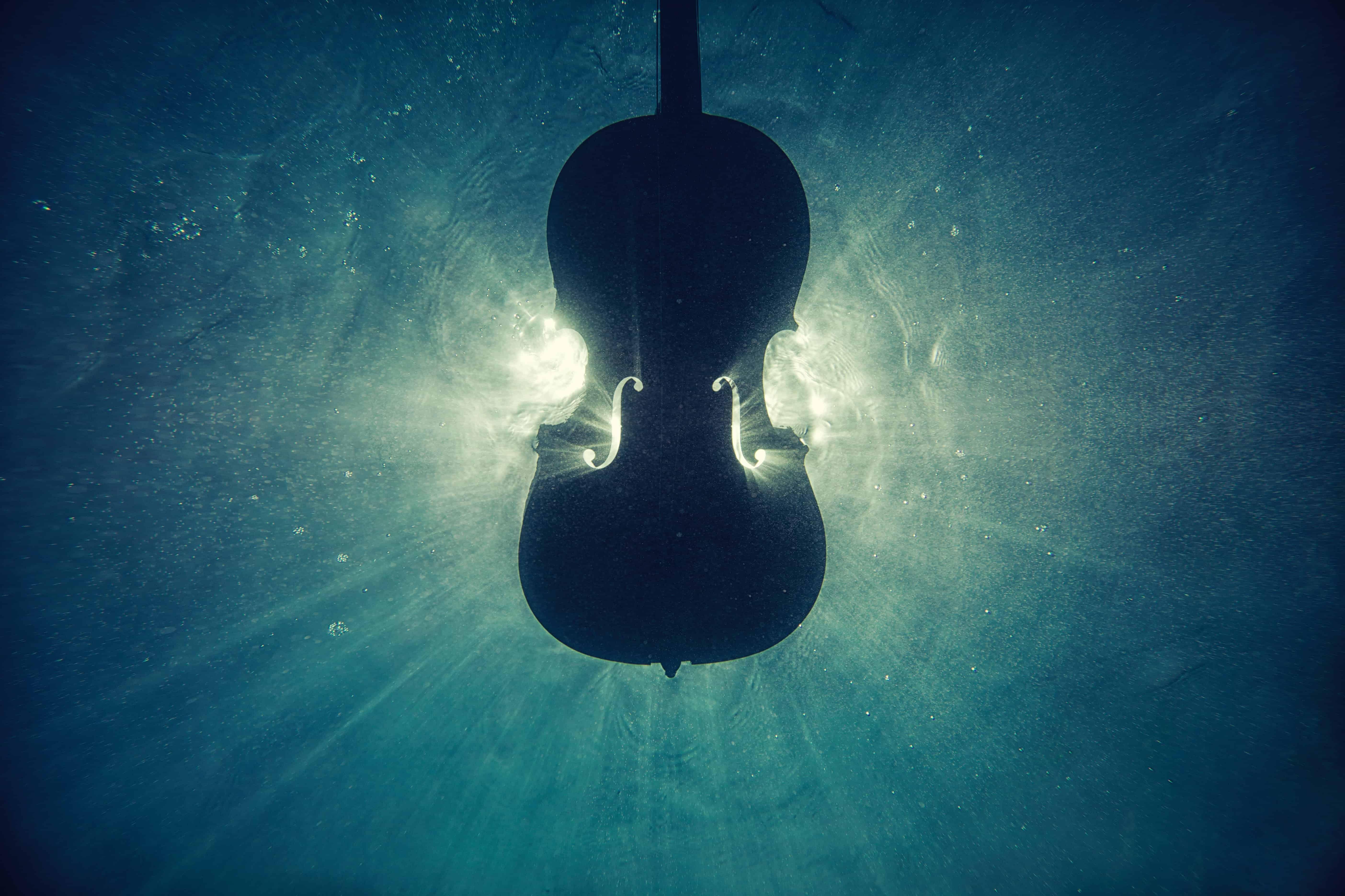 Похороны, свадьбы и скрипка: трагическая история одного гробовщика