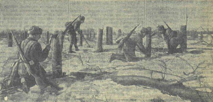 Саперы расчищают проходы в противотанковых заграждениях. Фото Ф. Левшин