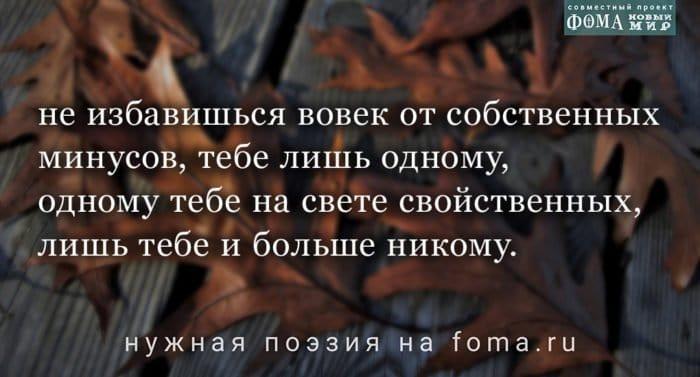 Поэзия Евгения Солоновича: На тайной волне