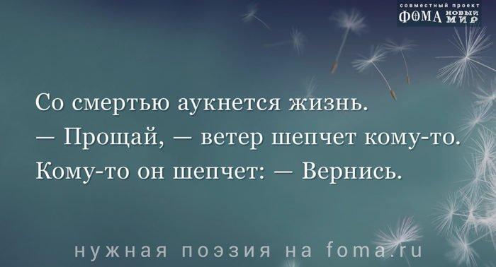 Поэзия Ильи Оганджанова: Брат мой кузнечик