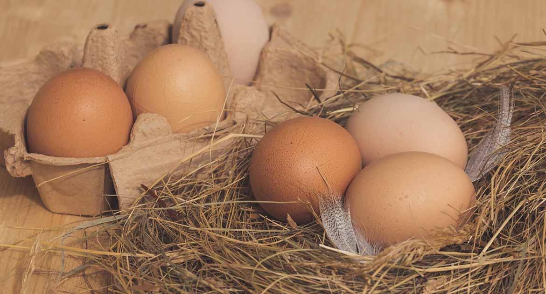 Нужно ли красить яйца к Радонице и нести на кладбище?