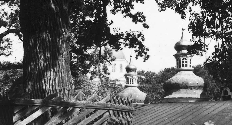 «И вдруг старец Иоанн (Крестьянкин) догнал меня с иконой в руках» — случай из жизни священника