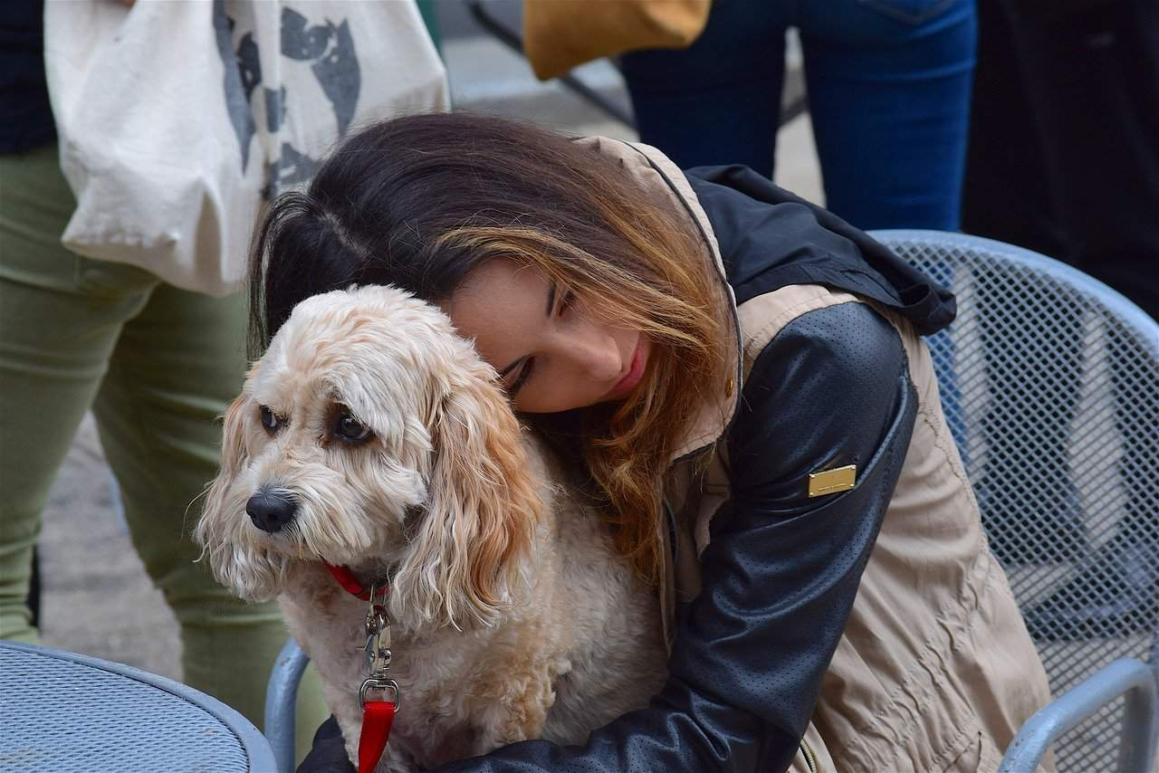Один батюшка сказал, что собака это нечистое животное и ее в храм пускать нельзя, а кошку можно. Почему так? Священник отвечает на вопрос подростка