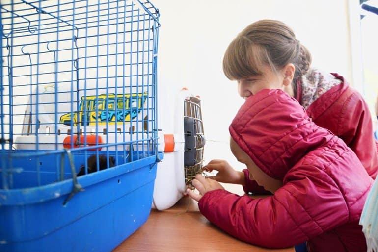 Дарить радость: первому подмосковному детскому хоспису исполнился год