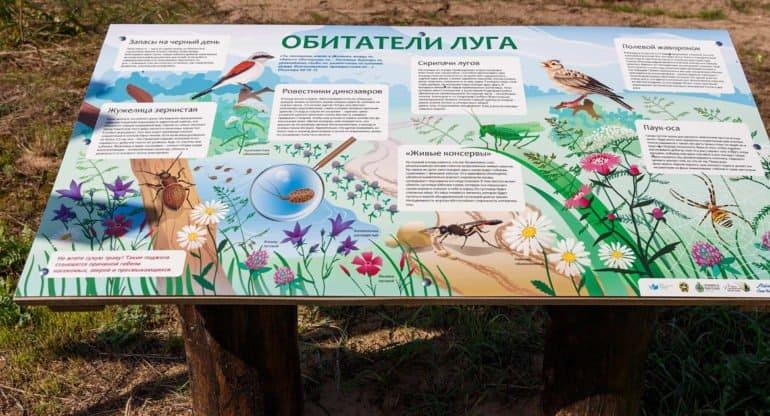 Уникальную эко-тропу создали в Лавришевском монастыре в Беларуси