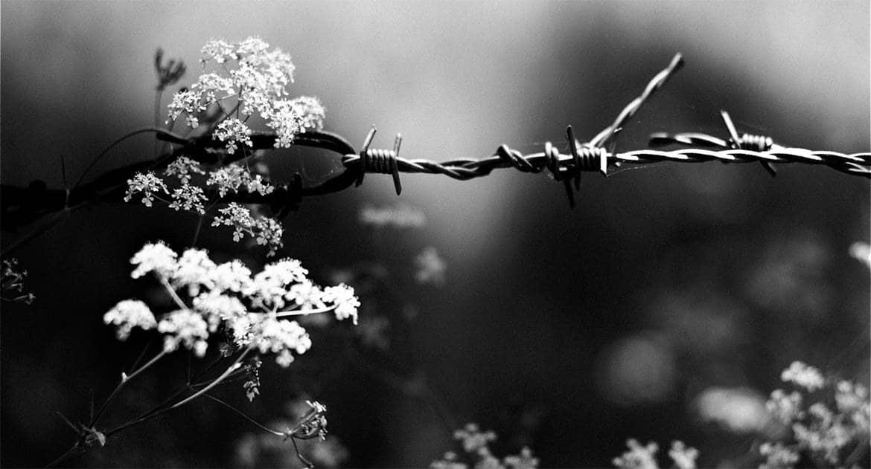 Чудо в черном и душном аду – история из жизни одного осужденного