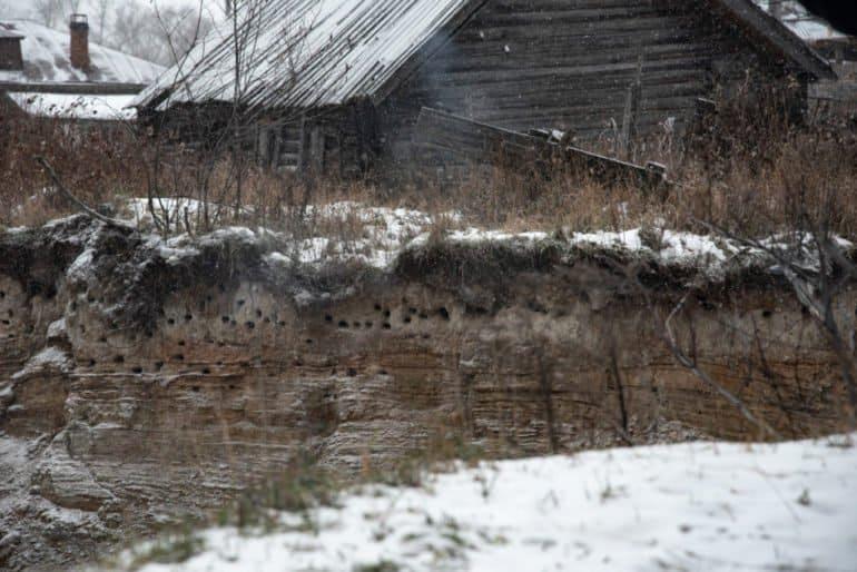 Дважды убитыми называют расстрелянных на Колпашевском яре