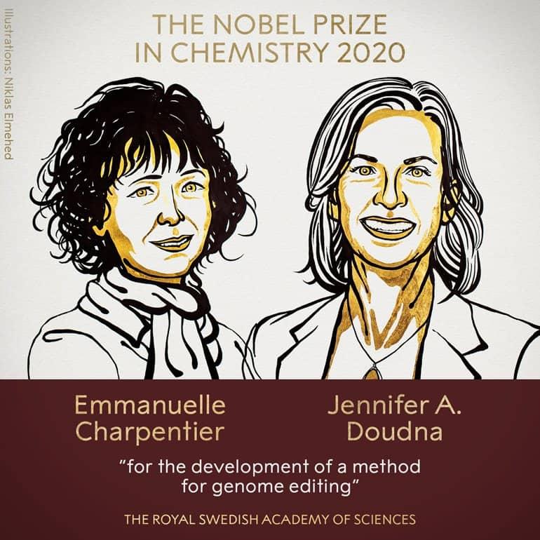 Нобелевскую премию 2020 года по химии дали за разработку, помогающую лечить тяжелые недуги