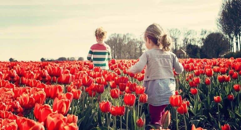 Воспитываю внуков. Можно молиться о них молитвой матери?