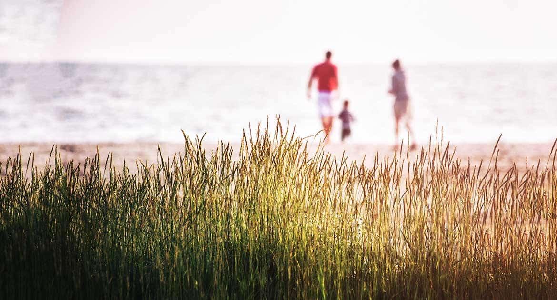 Как вести себя дедушкам и бабушкам, если дети и внуки вне Церкви?