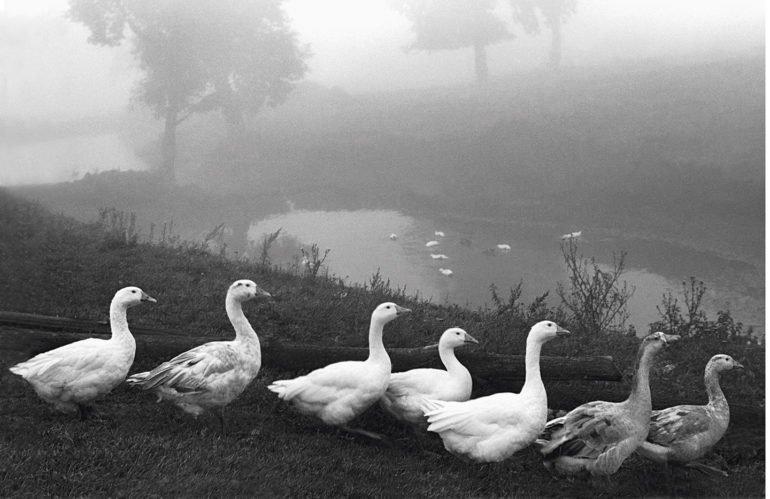 «Жизнь, это прежде всего— про радость»,— фотограф Евгений Канаев