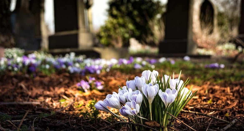 Можно ли жить рядом с кладбищем?