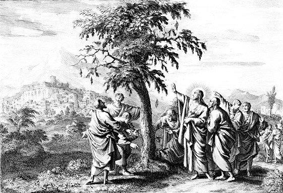 Что Евангелие говорит о покаянии? И как эти слова понимать?