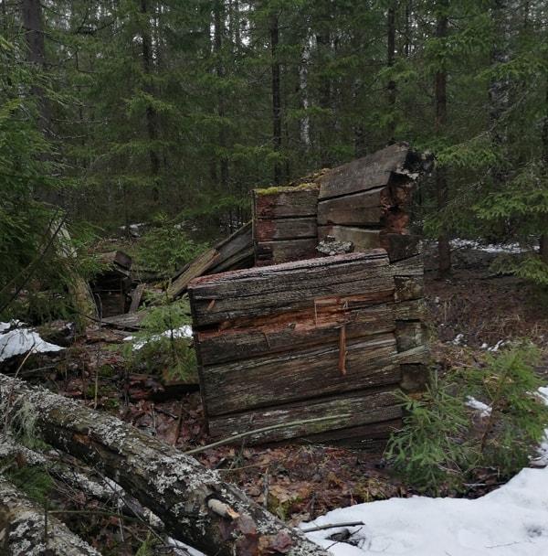 Требуются волонтеры для обустройства места памяти новомучеников в вологодском лесу