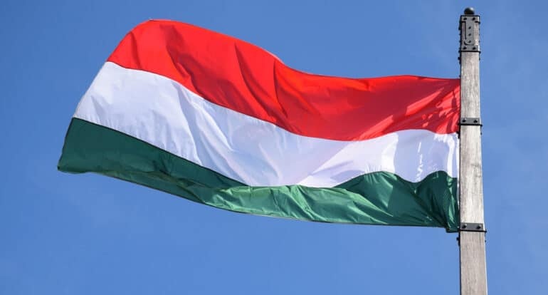 Владимир Легойда отметил позитивное сотрудничество Церкви и властей Венгрии в вопросе защиты традиционной семьи