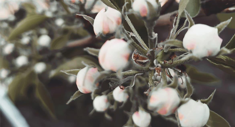 Грех ли во время близости коснуться крестика?