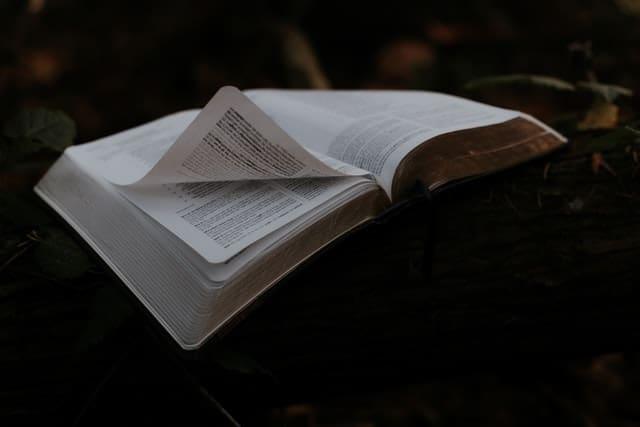 Почему Христос не написал Евангелие Своей рукой?