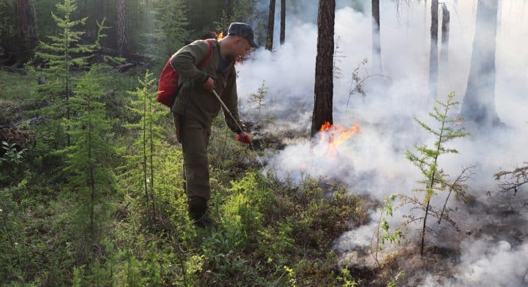 Неравнодушные люди объединились для тушения лесных пожаров в Якутии