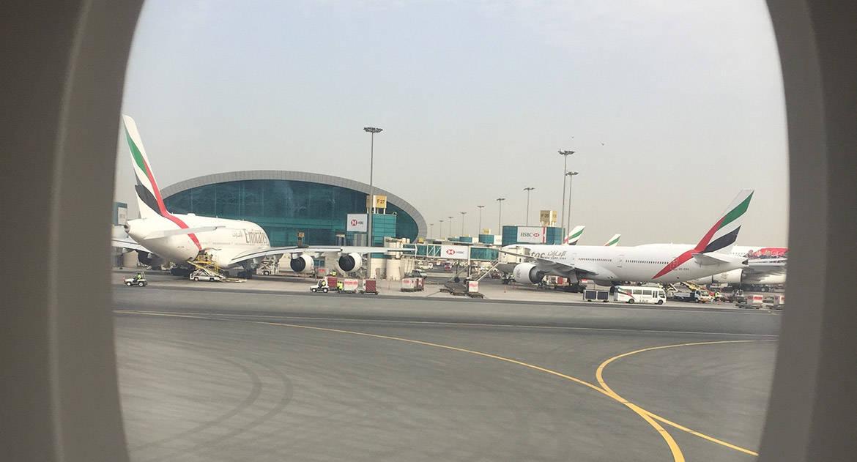 Какая работа лучше — в ОАЭ или дома?
