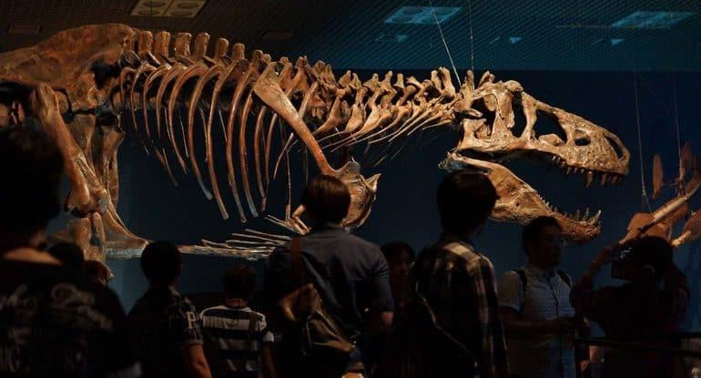 Был ли грех в эпоху динозавров?