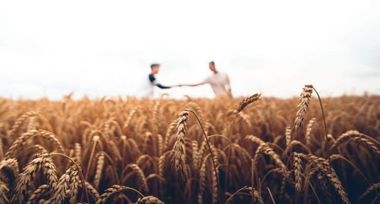 Как понимать евангельские притчи современному человеку?