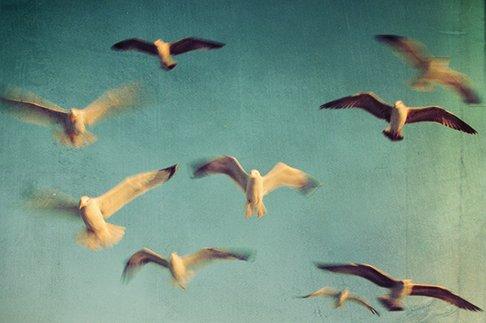 ...Дальше можно только лететь